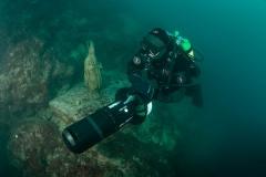 Podmorsko Hodocasce - Foto Ranko Frka-8146